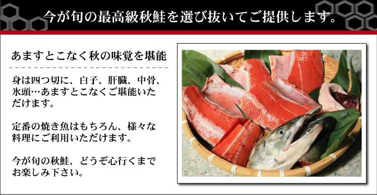 l_akisake20103